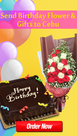 send birthday flower and gifts to cebu philippines