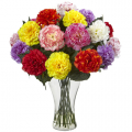 send carnations flower to cebu philippines, carnations flower delivery in cebu