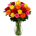 assorted color roses send to cebu, assorted color roses delivery to cebu philippines