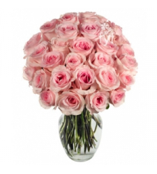 24 pink rose vase order to cebu