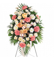 Daisies,Palms,Roses and Spray Chrysanthemums Online Order to Cebu Philippines