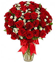 3 dozen red roses vase to cebu