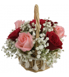 send 12 pcs. of red and pink roses basket to cebu