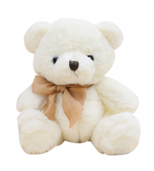 White Color Small Size Teddy Bear